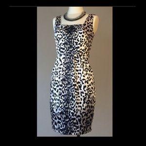 White House Black Market Leopard Print Dress